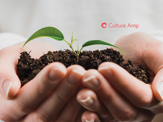 Culture Amp Announces Foresight Engine Enabling Business Leaders to See Into the Future