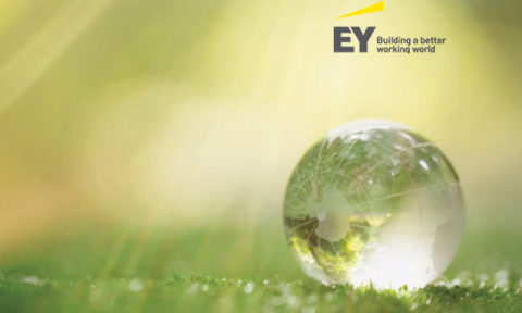 EY Study: AI Important to a Company's Success, but Lack of Skilled Personnel Remains a Barrier