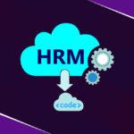 Role of Cloud HR