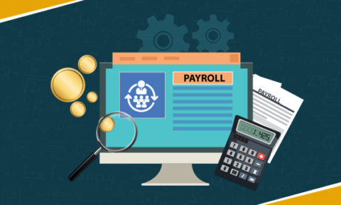 How Payroll Software Can Streamline Your Business