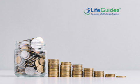 LifeGuides Announces $1M Follow-on Funding From North Shore Venture Partners As Financing Exceeds $5.5M (To Date)